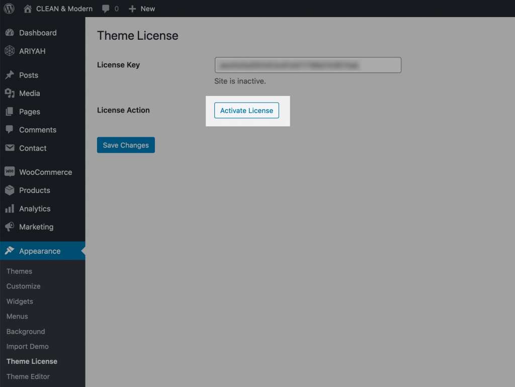 Enter your theme license key, save, and activate license