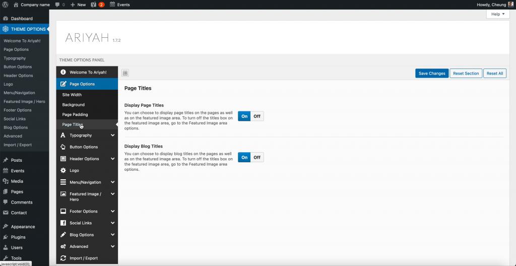 Ariyah Theme Page Titles Options